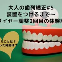 40代からの歯列矯正#5:装置をつけるまで~ワイヤー調整2回目の体験談